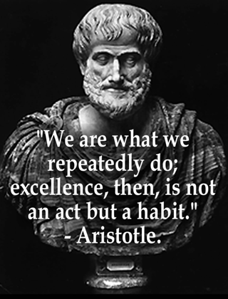 Aristotle on excellence.png