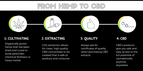 Four main phases in the CBD manufacturing process | Stonewall Engineering
